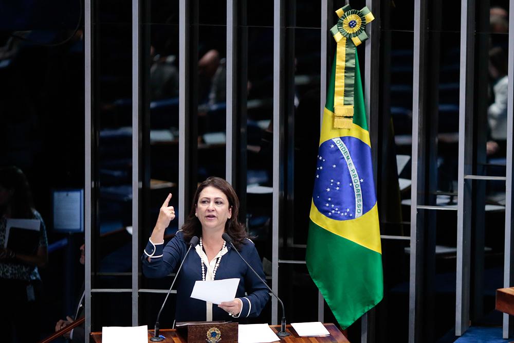 Kátia Abreu: senadora é a relatora do projeto que muda a Lei 8.666.