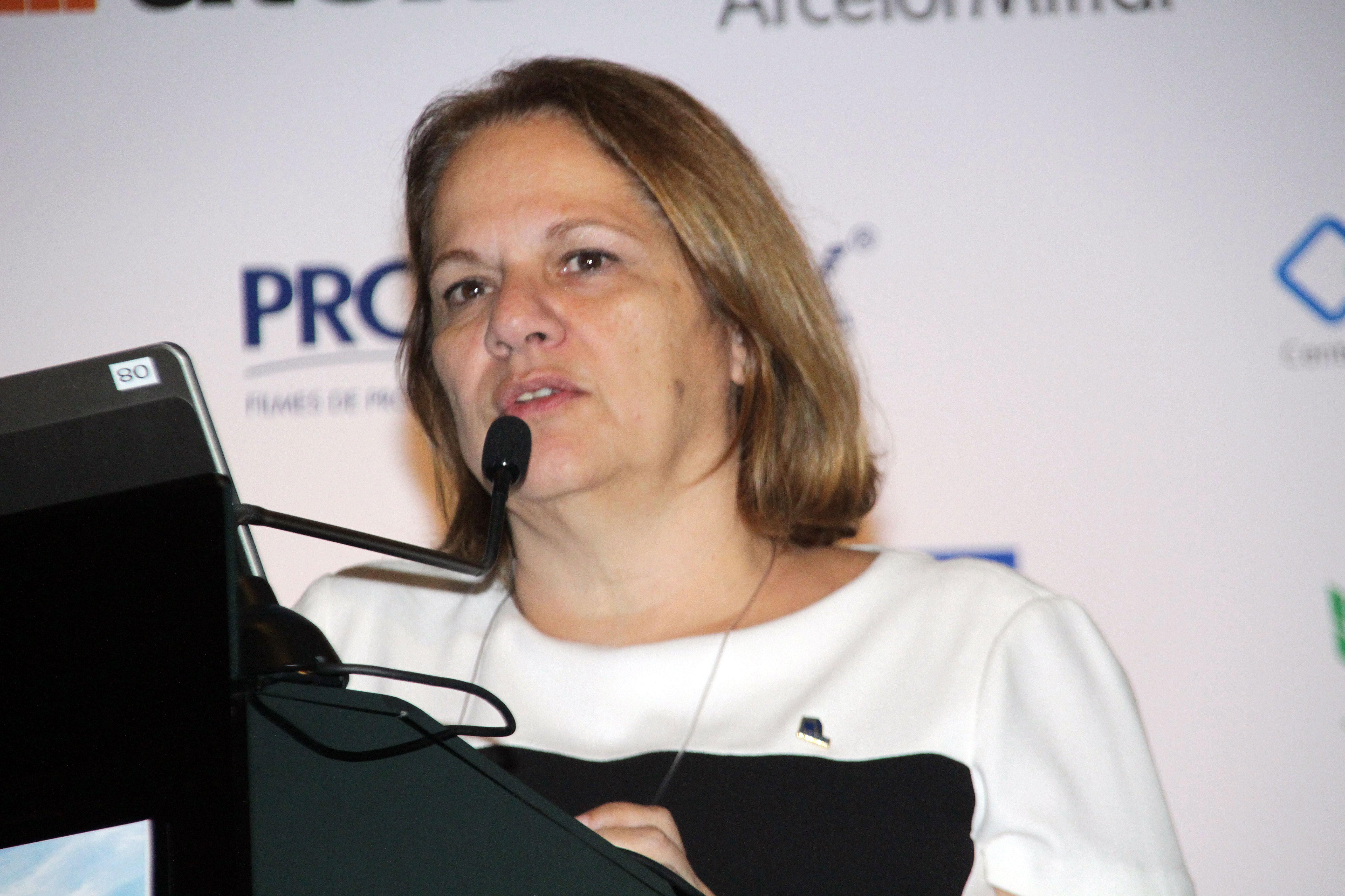 Sueli Bacchareti Bueno: ABECE e Ibracon mantém comitê ativo para analisar e preparar revisão em 2019