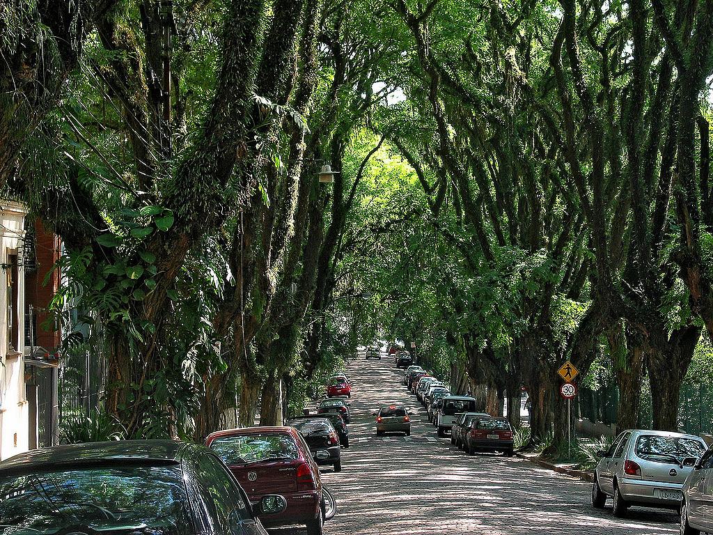 Prefeitura de Porto Alegre afirma que análises técnicas estimulam a manutenção do pavimento com pedras de basalto