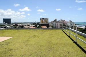 Telhado extensivo: vegetação rasteira sem exercer carga sobre a laje.