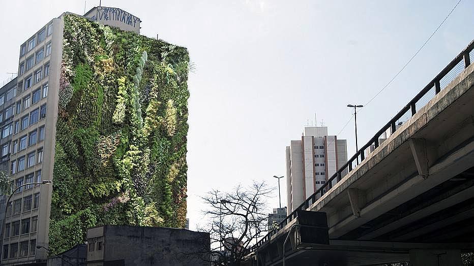 paredes-verdes_2
