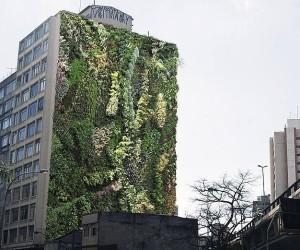 Paredes sem janelas, conhecidas como empenas cegas, são as ideais para receber fachadas verdes