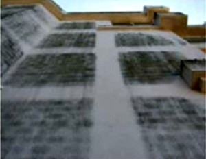 Fungos na argamassa de fachada prejudicam desempenho térmico e acústico e podem atingir estruturas