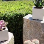 Vaso de concreto: serve tanto para ambientes internos quanto externos