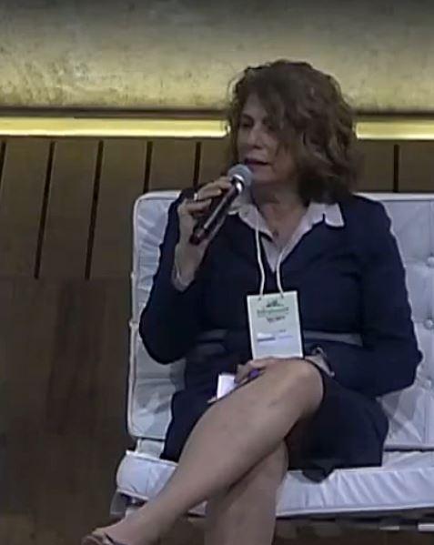 Marilene Ramos, diretora do BNDES: sozinho, Brasil não consegue viabilizar infraestrutura sustentável