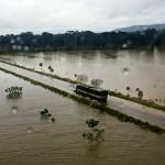 Levantamento tem capítulo específico sobre a vulnerabilidade das rodovias em períodos chuvosos mais intensos.Crédito: Ministério da Infraestrutura