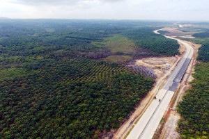 Nova capital da Indonésia será construída na ilha de Bornéu e tem alguma infraestrutura, como rodovias   Crédito: AFP