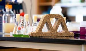 Microorganismos produzem massa semelhante ao concreto. No futuro, material pode substituir o drywall em paredes de vedação. Crédito: CU Boulder College of Engineering and Applied Science
