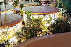 """Escritórios menores, individualizados e permeados por áreas verdes: cidades e edificações terão que se adaptar ao """"novo normal"""". Crédito: Dezeen"""